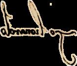 firmaLeonardo