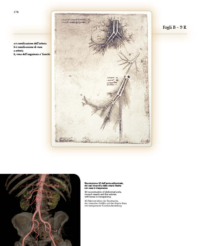 Segreti del corpo6.jpg
